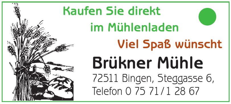 Brükner Mühle