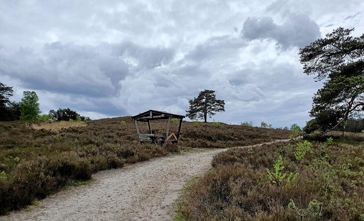 Durch die Heide Image 2