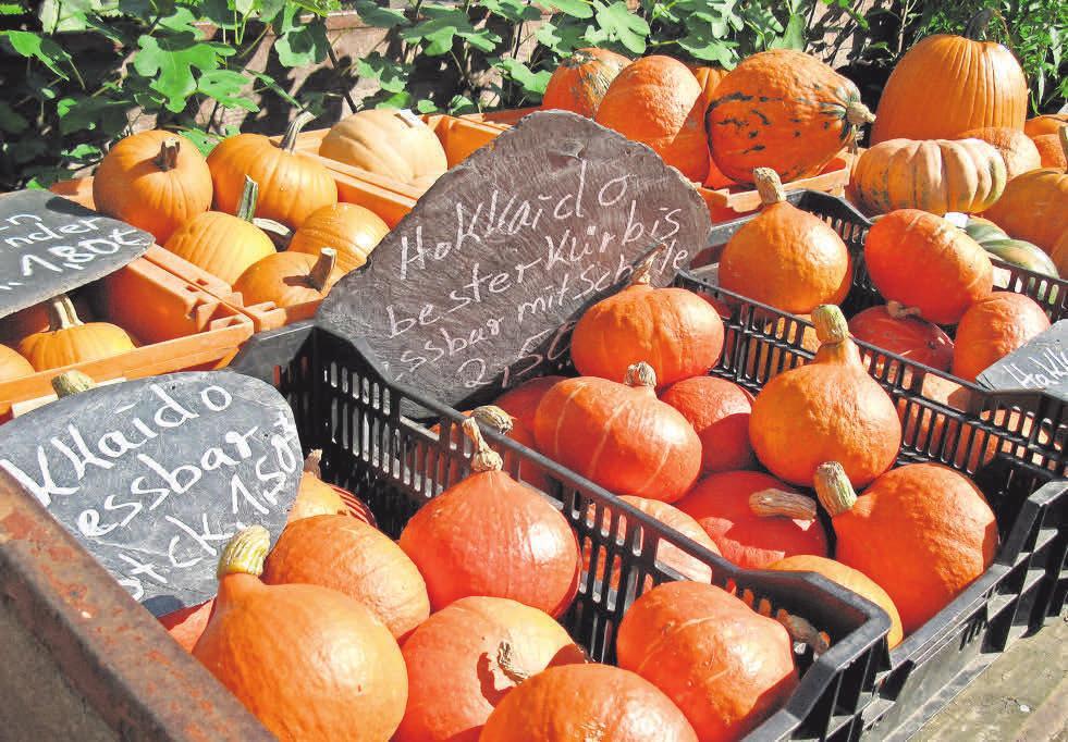 Die Früchte des Herbstes, so wie hier Kürbisse, gehören zum Angebot des Bauernmarktes