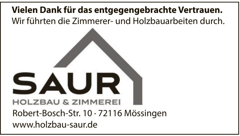 Saur Holzbau & Zimmerei