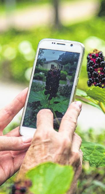 Sicher, es erfordert mehr Geduld und Übung als für junge Leute – dennoch ist das Alter kein Ausschlussgrund, um den Umgang mit einem Smartphone zu lernen. FOTO: CHRISTIN KLOSE, TMN