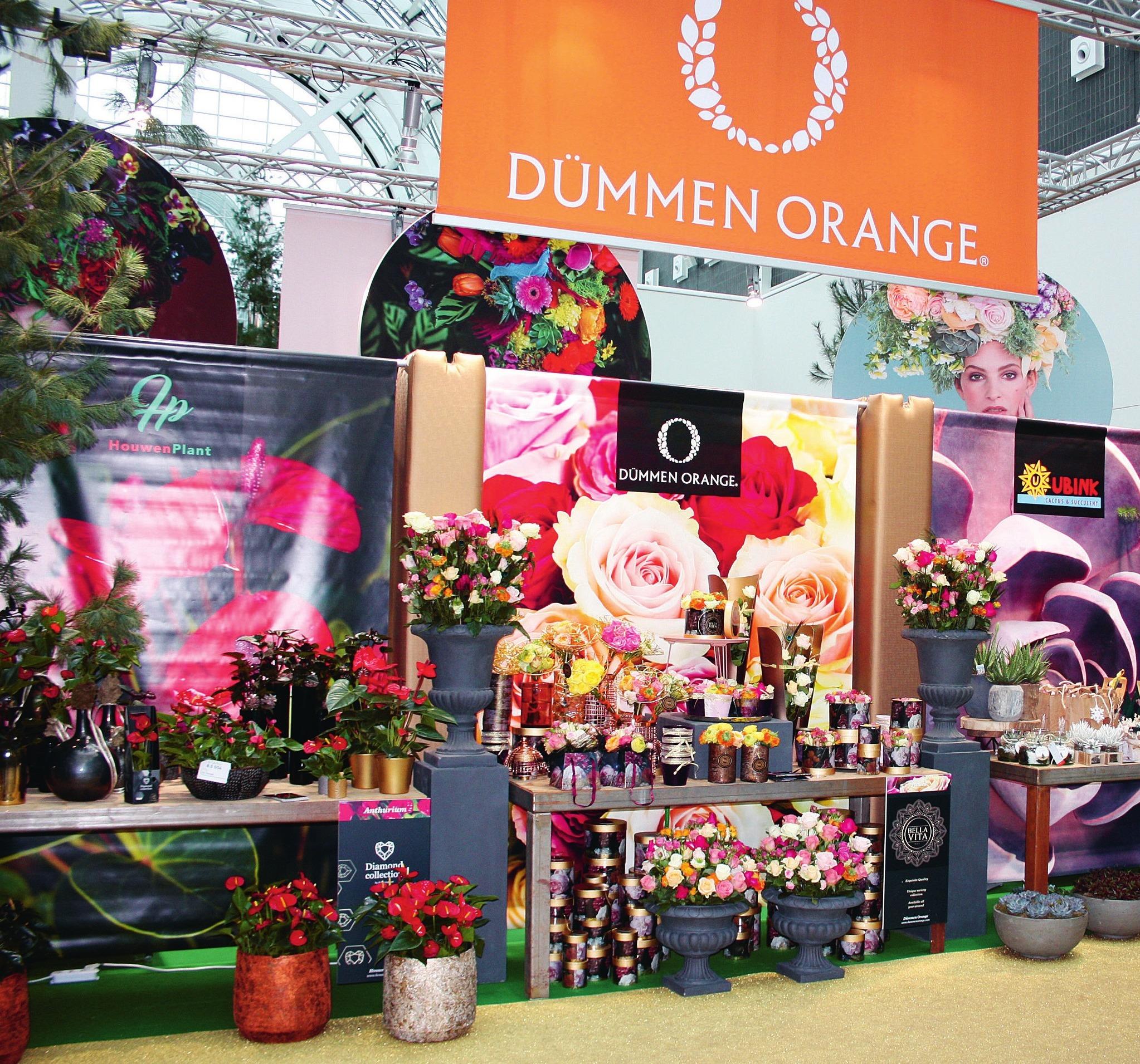 Dümmen Orange zeigte ungewöhnliche Rosenarrangements.