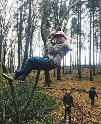 Matti klettert erst mal in den Baum, um ein Platz für das Nest zu suchen