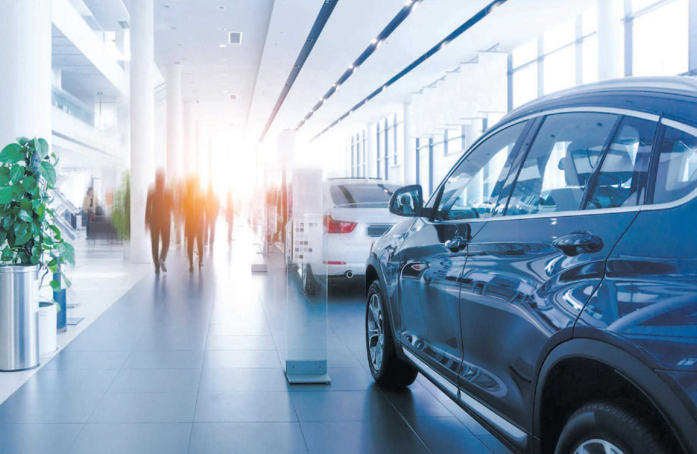 Mit 2,7 Prozent mehr Zulassungen bei Neuwagen im vergangenen Jahr ist die Branche sehr zufrieden.       Foto: SNVV/Adobe.Stock.com