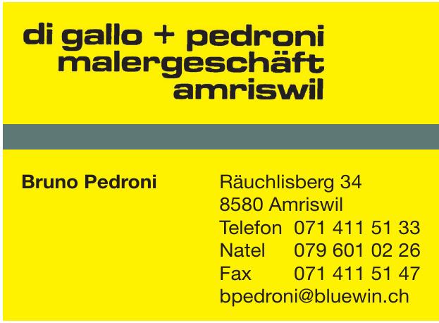 Di Gallo + Pedroni Malergeschäft Amriswil