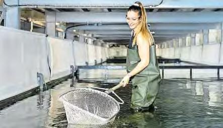 Von Andenfeeling bis Meeresdelikatessen Image 3