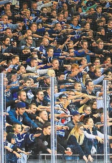 Schmerzlich vermisste Normalität: Aktuell müssen sich die Panther-Fans mit dem heimischen Sofa und dem Fernseher zufriedengeben, anstatt den ERC Ingolstadt von ihrem Stammplatz in der Saturn-Arena aus anzufeuern. Fotos: Lüger/privat