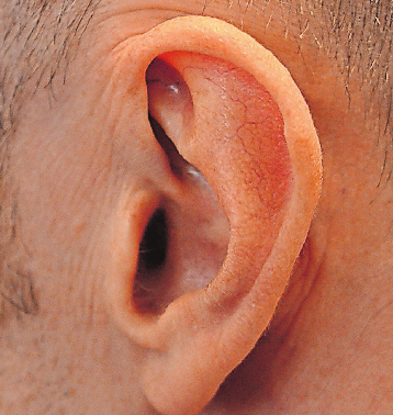 Die Hörleistung kann durch Training verbessert werden. FOTO: DPA