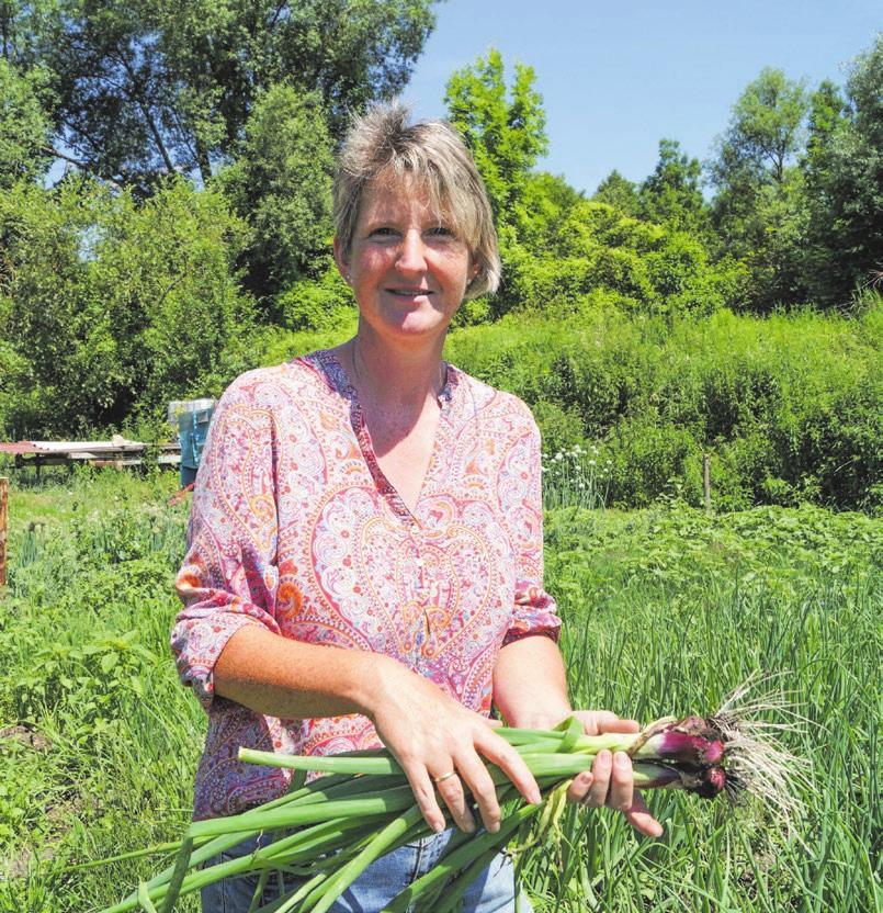 Der Geschmack des Gemüses hängt auch sehr vom Wetter ab. Fotos: Petra Starzmann