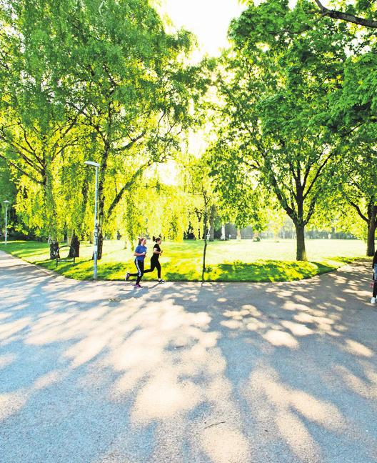 Der Stadtgarten Foto: Lichtgut/Verena Ecker