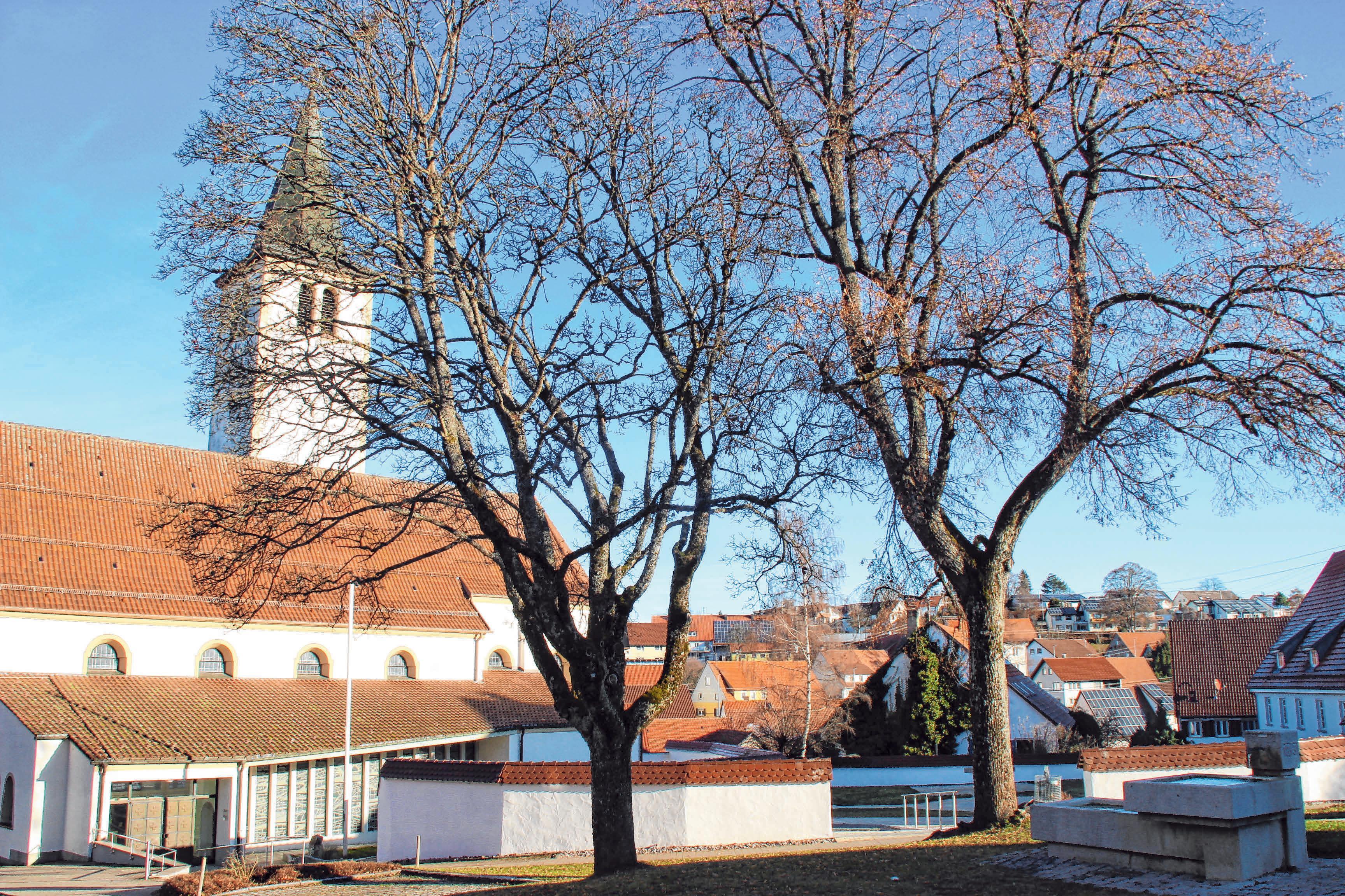Ansicht vom Rathaus aus. FOTOS:MOOSBRUCKER