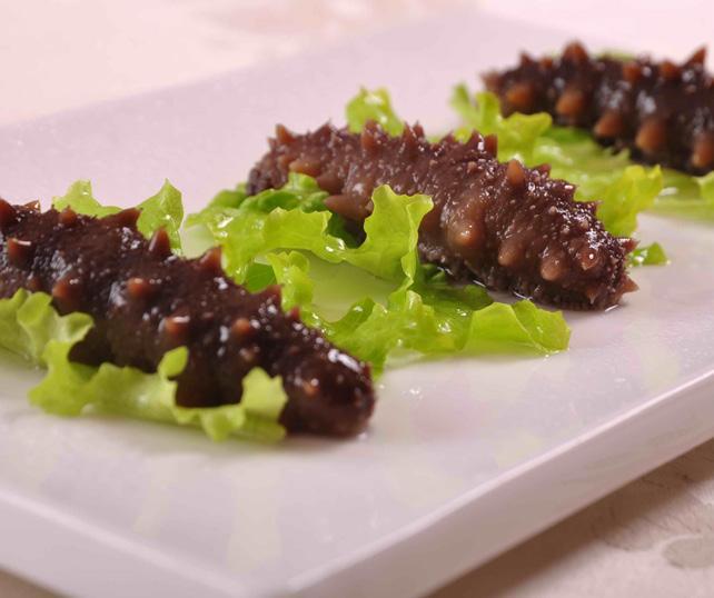 Neben Quallen haben auch Seegurken einen hohen Nährstoffgehalt. In Asien gelten sie schon lange als Delikatesse und sind deshalb dort schon überfischt. FOTO: PIXABAY