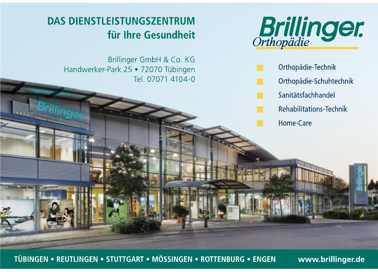 Brillinger GmbH & Co. KG
