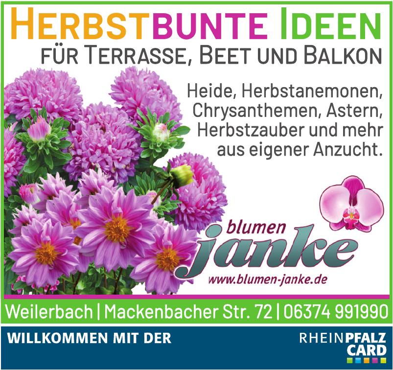 Blumen Janke