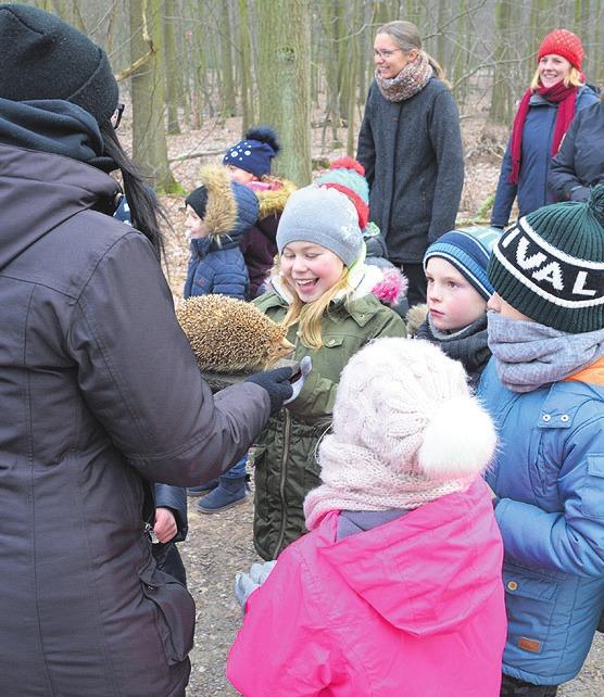 Die 2a der Eichendorff-Grundschule informierte sich beim NEST über Igel.