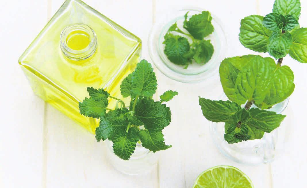 Mit gesunden Ölen und viel Grün stärkt man die Widerstandskraft des Körpers im Kampf gegen die Entzündungen