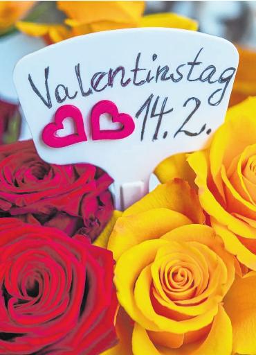 Am 14. Februar ist Valentinstag – Tag der Liebenden. FOTO: PATRICK PLEUL