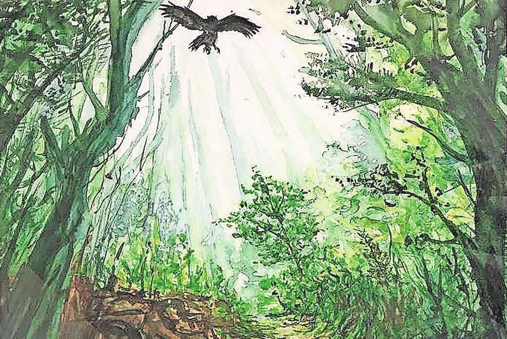 Ein Naturschauspiel von Philip Enders.