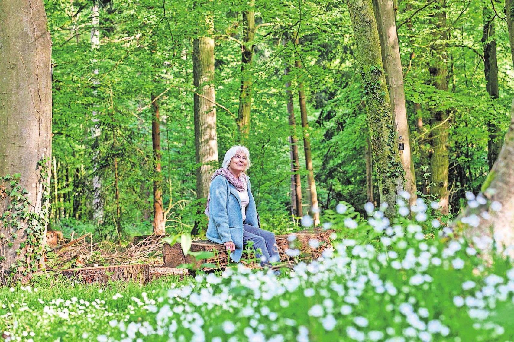 Wer überlegt, sich in einem Bestattungswald beisetzen zu lassen, kann dort bei einem individuellen Termin den richtigen Platz finden. Foto: djd/FriedWald