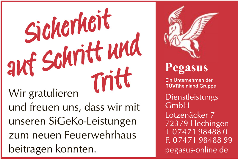 Pegasus Dienstleistungs GmbH