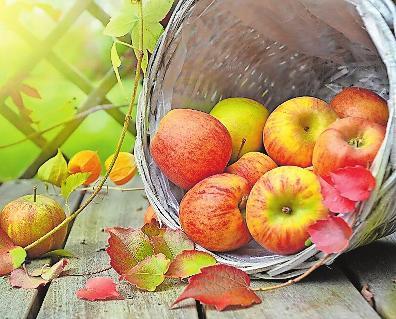 Der deutschen liebste Frucht: Apfel. Foto: Rebekka D/Pixabay/frei