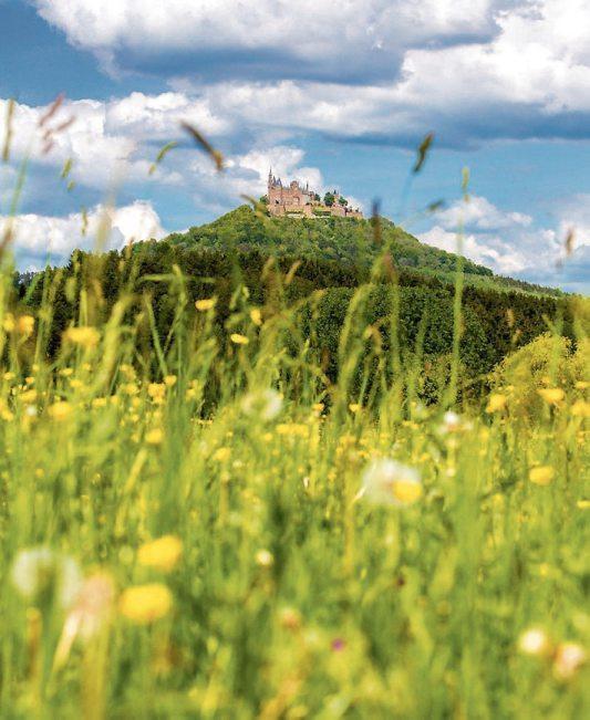 Bisingen ist umgeben von Natur. Die gesamte Region um Bisingen mit Albvorland und Albtrauf bis zur Albhochfläche ist ein Wanderparadies. Bild: Gemeinde Bisingen
