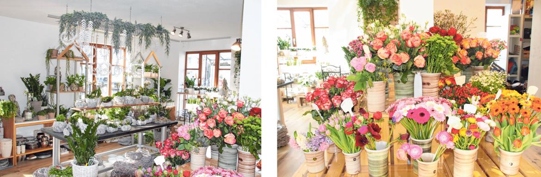 Nach fast 25 Jahren findet man das Blumengeschäft Bicker nun am Marktplatz 30.