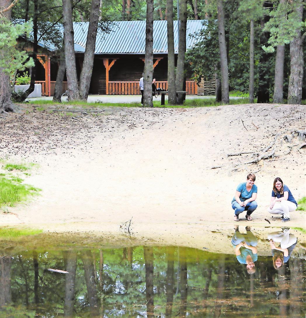 Schauplatz des Waldkindergartens: Florian-Hütte, Wald und Tümpel, der allerdings noch eingezäunt werden muss.
