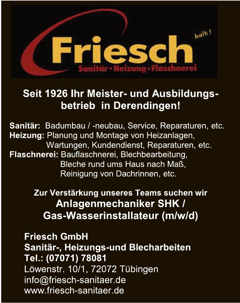 Friesch GmbH