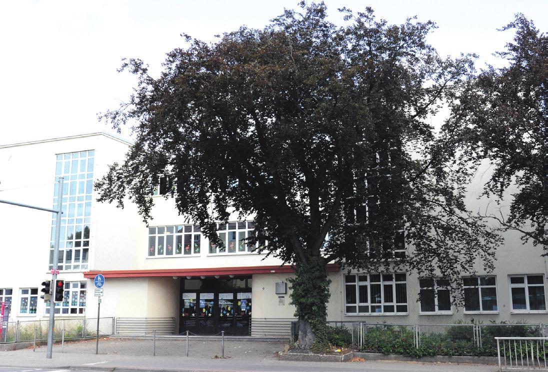Die Stadtverwaltung plant die Altstädter Schule an den Landkreis zu veräußern. Archivfoto: Müller
