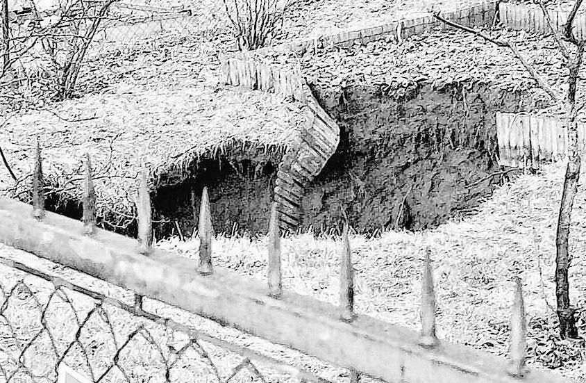 """2001 brachte sich die Zeche """"Vaterland"""" in böser Erinnerung. Ein riesiger Birnbaum verschwand."""