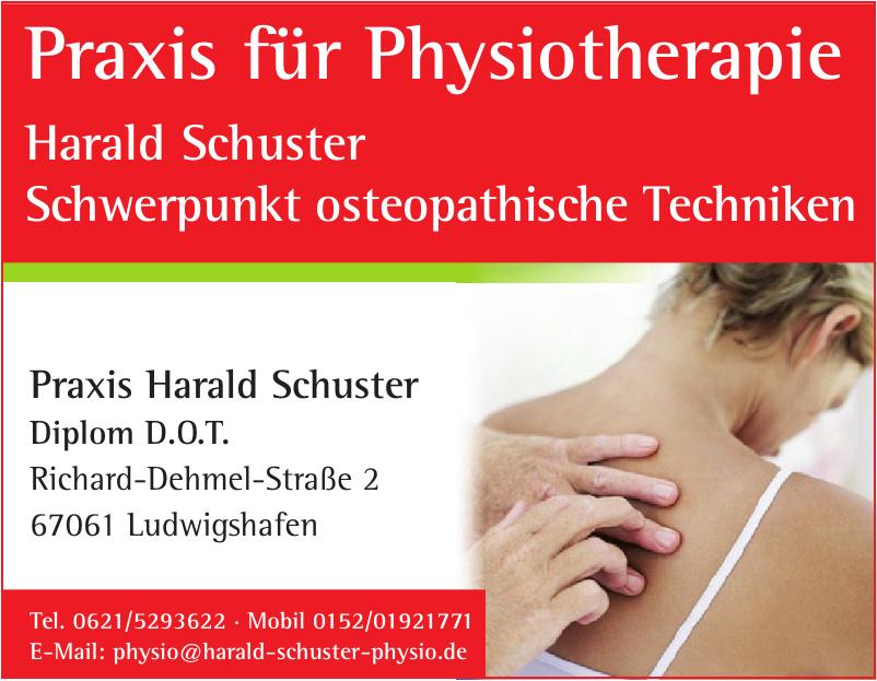 Praxis Harald Schuster Diplom D.O.T.