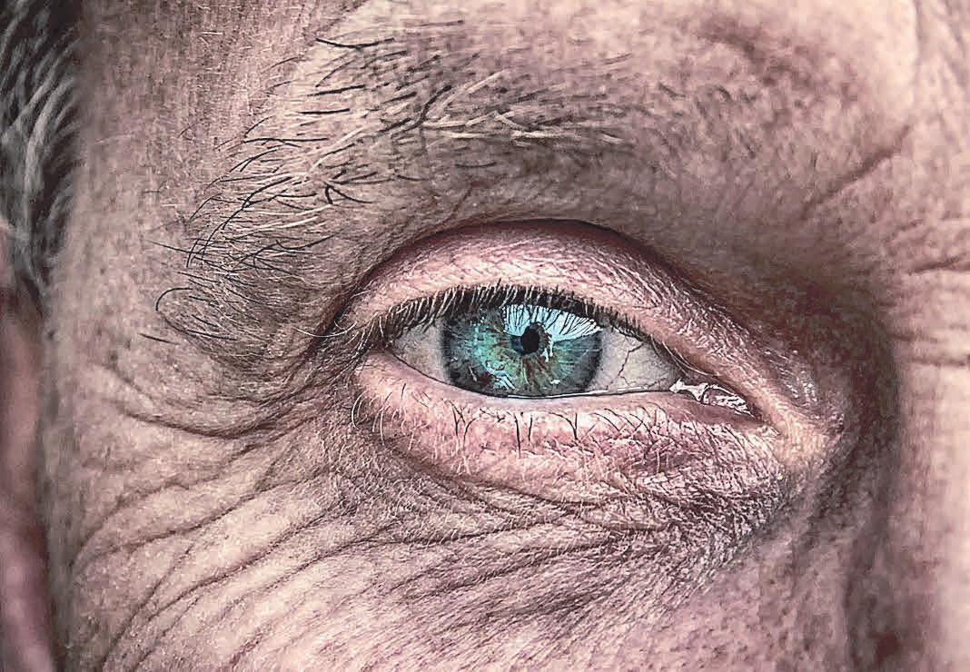 Heutzutage gibt es die verschiedensten Möglichkeiten, das eigene Alter zu verbergen – besonders durch Vorbeugung bei der Faltenbildung.