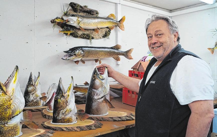Simon Henle mit Fischpräparaten.