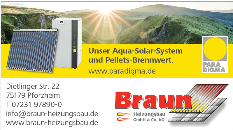 Braun Heizungsbau GmbH & Co. KG