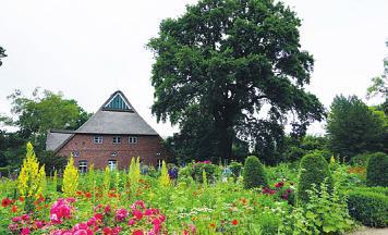Der Baumpark Arboretum in Ellerhoop lohnt einen Besuch