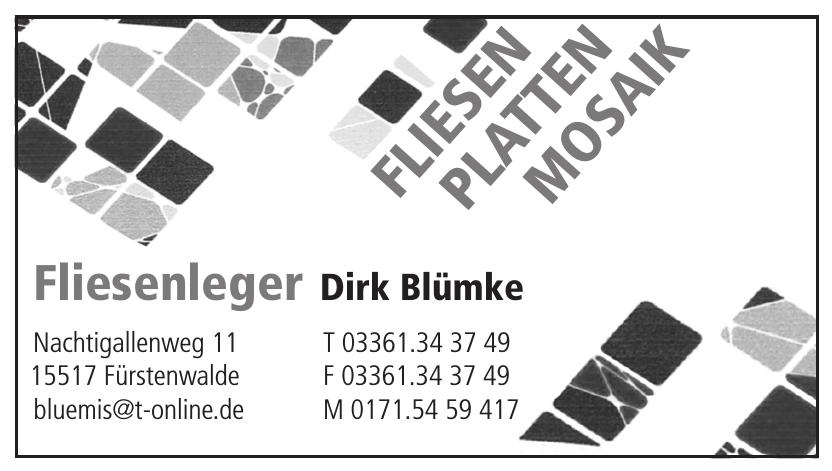 Fliesenleger Dirk Blümke