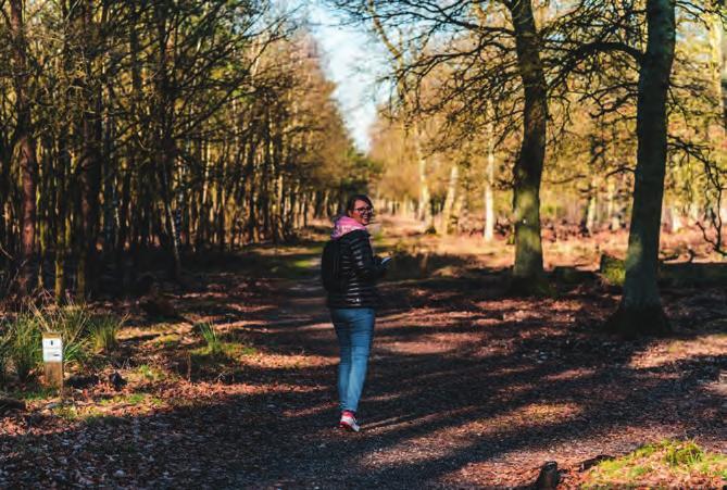 Ob Radeln auf dem RurUfer-Radweg oder Wandern im Naturpark Hohe Mark – der Niederrhein punktet mit Vielseitigkeit. Foto: Malte Schmitz