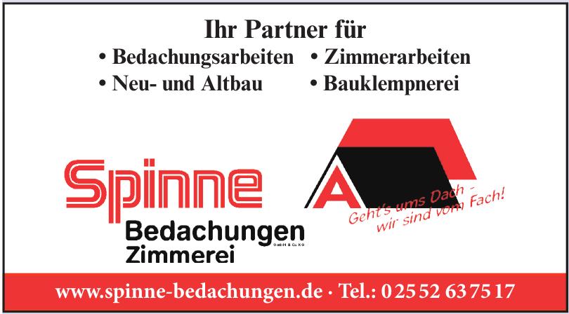 Spinne Bedachungen GmbH & Co. KG
