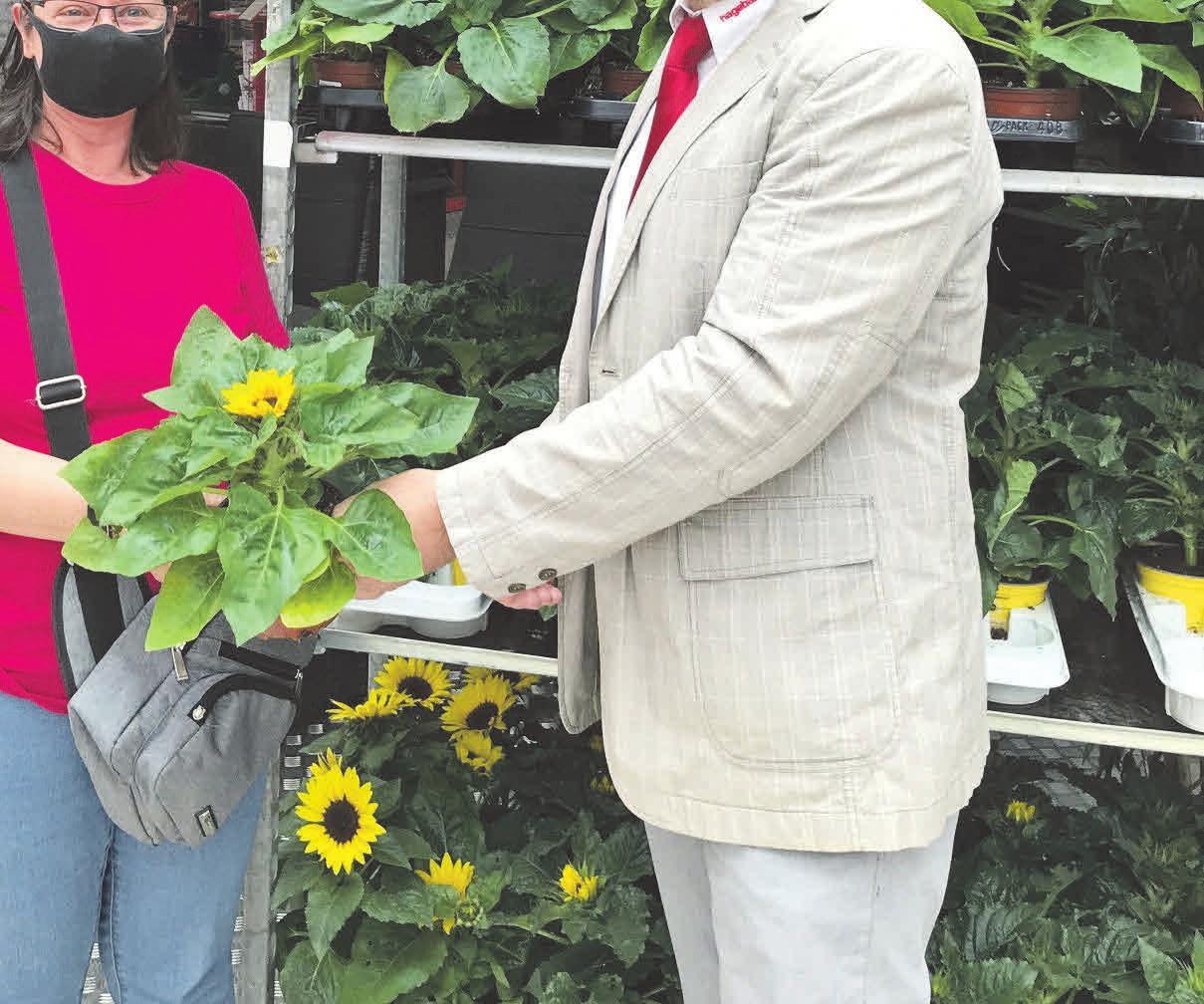 Der Hagebaumarkt am Eyßelheideweg zauberte mit leuchtend gelben Blumengrüßen vielen Kunden ein Lächeln aufs Gesicht.