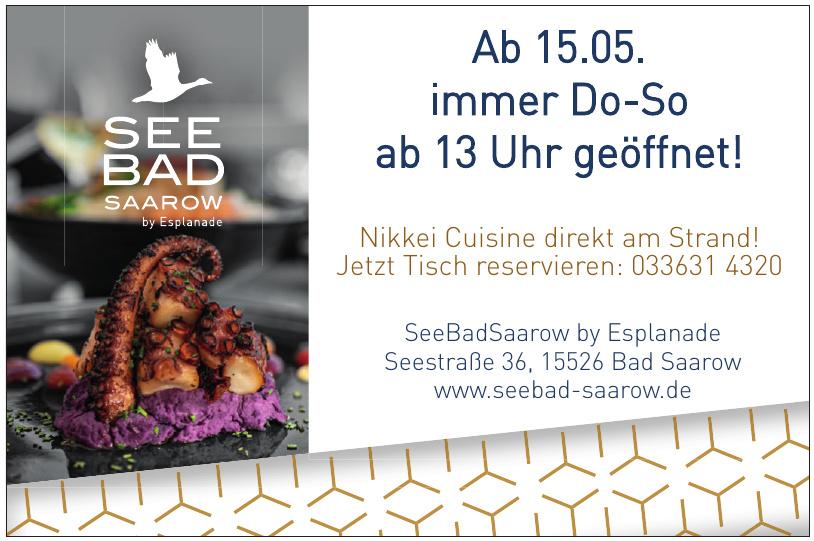 SeeBadSaarow by Esplanade