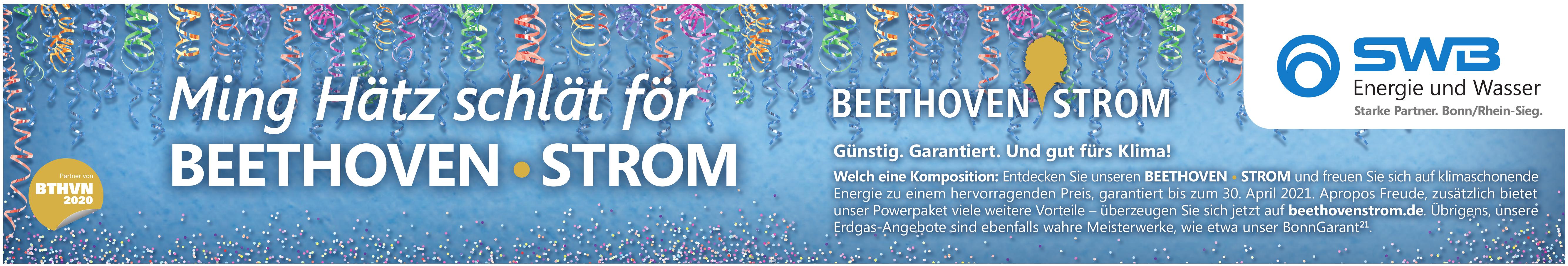 SWB - Beethoven Strom
