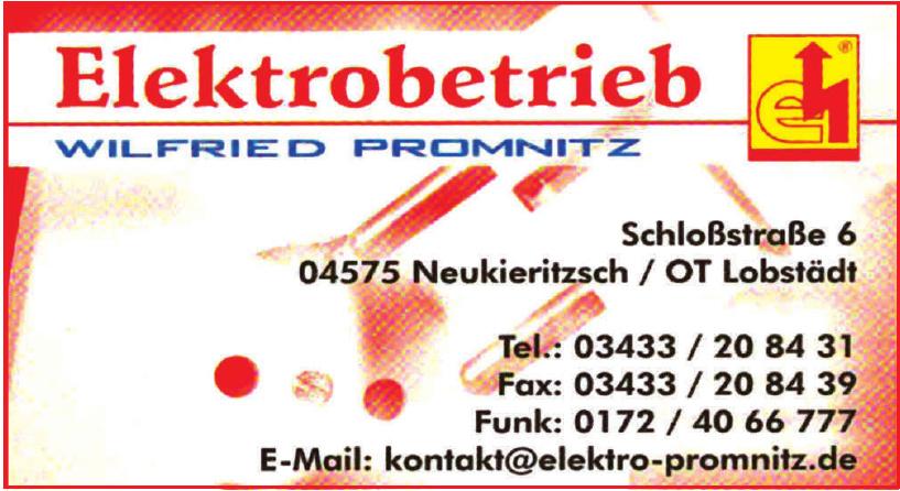 Elektrobetrieb Wilfried Promnitz