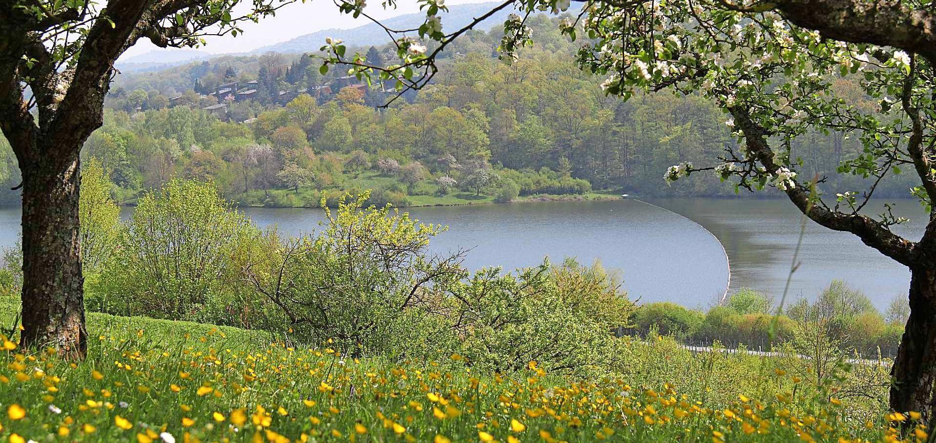 """Erstmals hat sich der Neckar-Zaber-Tourismus mit seinem neu beschilderten Drei-Seenweg in Zaberfeld um den Titel """"Deutschlands schönster Wanderweg"""" beworben."""