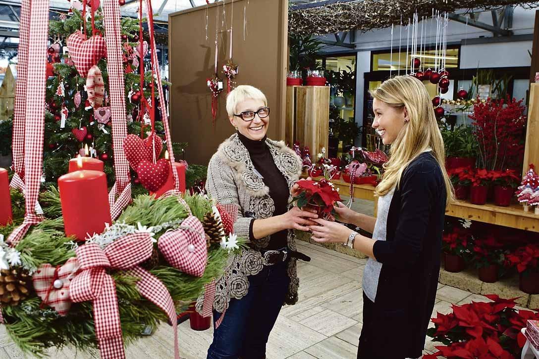 Die Vorweihnachtszeit ist ein Paradies für Dekoliebhaber und Kreative. Im gärtnerischen Fachhandel finden sie alles, was das Herz für eine besinnliche und fröhliche Atmosphäre im eigenen Zuhause braucht. Foto: GMH/BVE