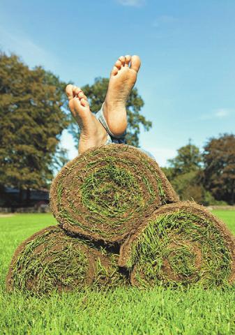 Rollrasen garantieren eine schnelle und einfache Begrünung in bester Qualität. Foto: Matthies Landwirtschaft
