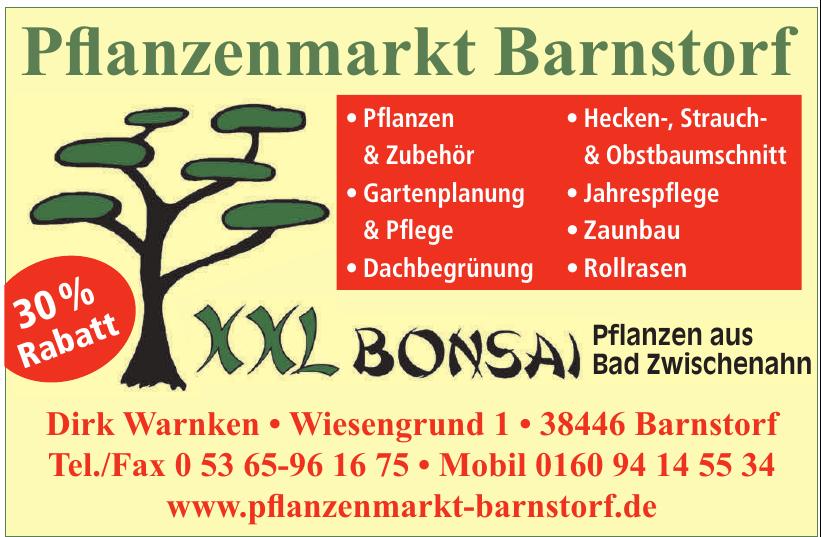 Pfanzenmarkt Barnstorf