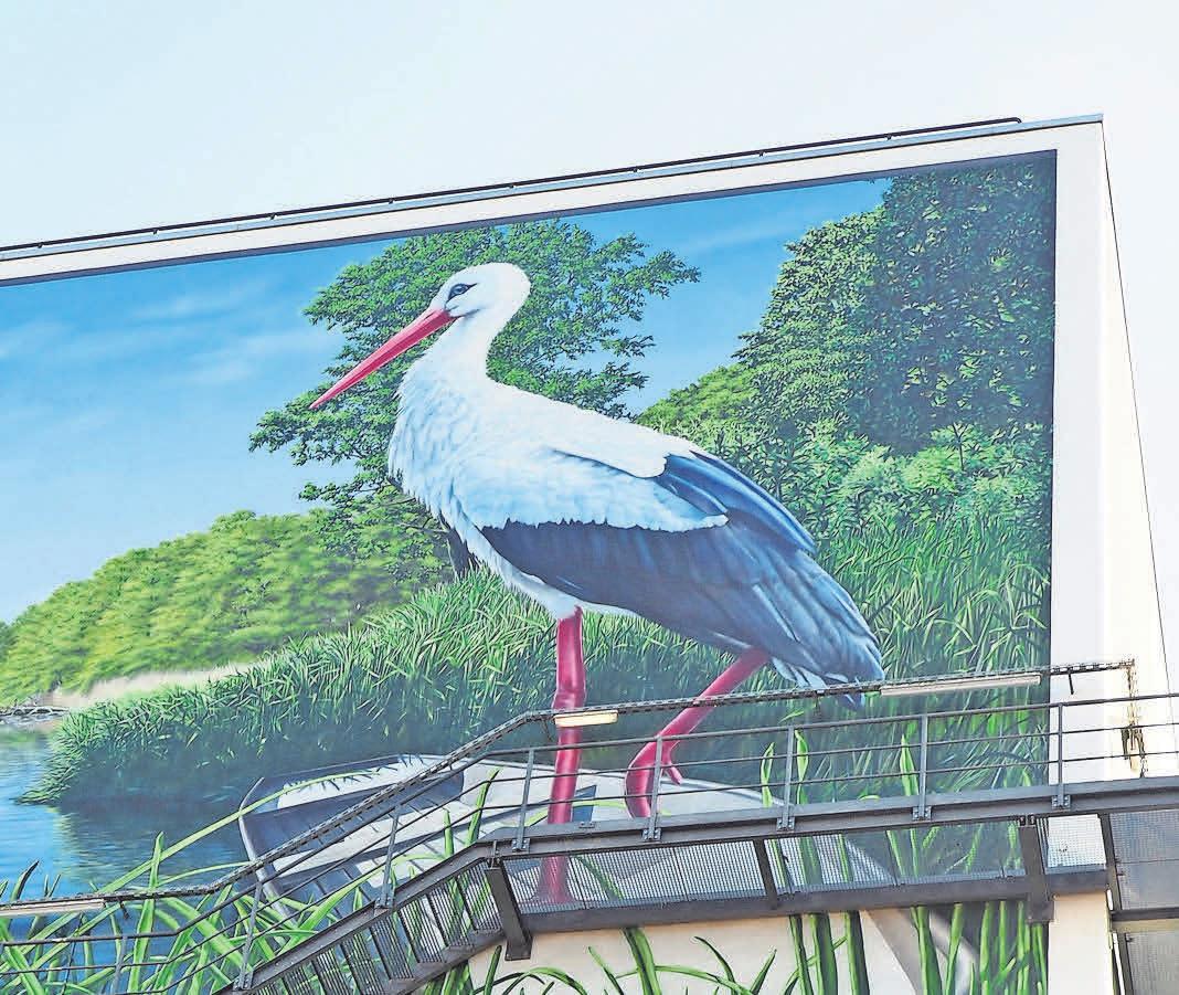 Zehn Meter hoch ist der Storch, den Fassadenkünstler Marco Brzozowski auf die Betonleinwand gebracht hat. Fotos (2): Jessica Kliem