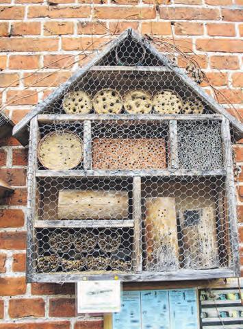 Ein Nützlingshotel lockt Wildbienen und Co. in den Garten. Foto: Marlis Tautz