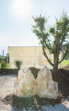 Neueröffnung LALINO-Biergarten Image 5